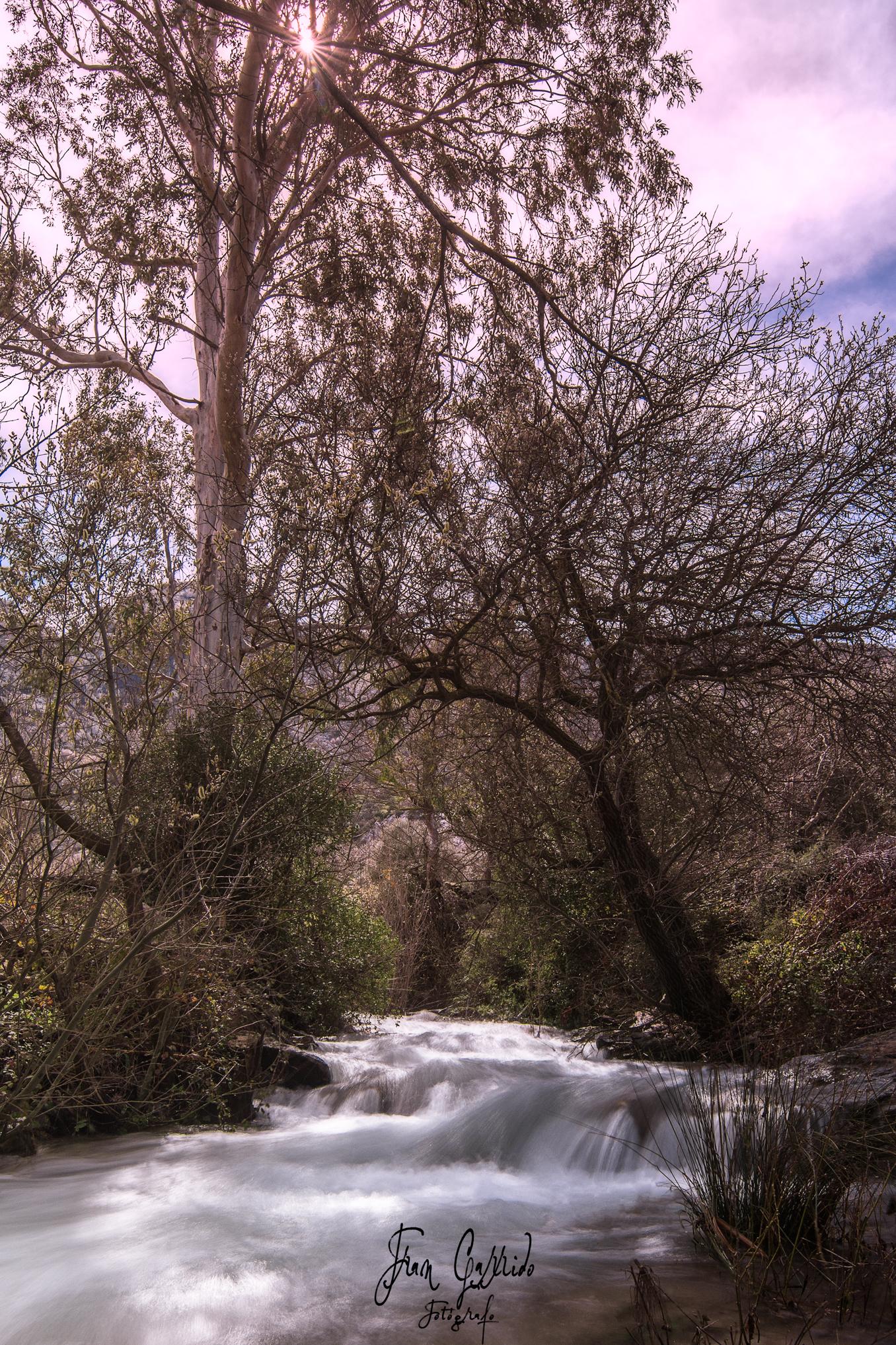 Arroyo del Cerezo